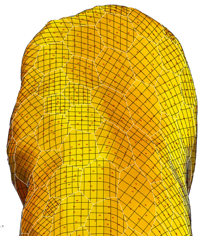 Auto NURBS Surfacing Of Meshes – Grasshopper