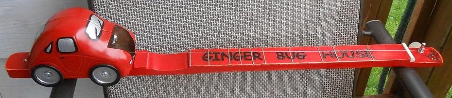 Ginger Bug Canjo