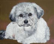 """Pet Portrait Painting Sample """"Poodle"""""""
