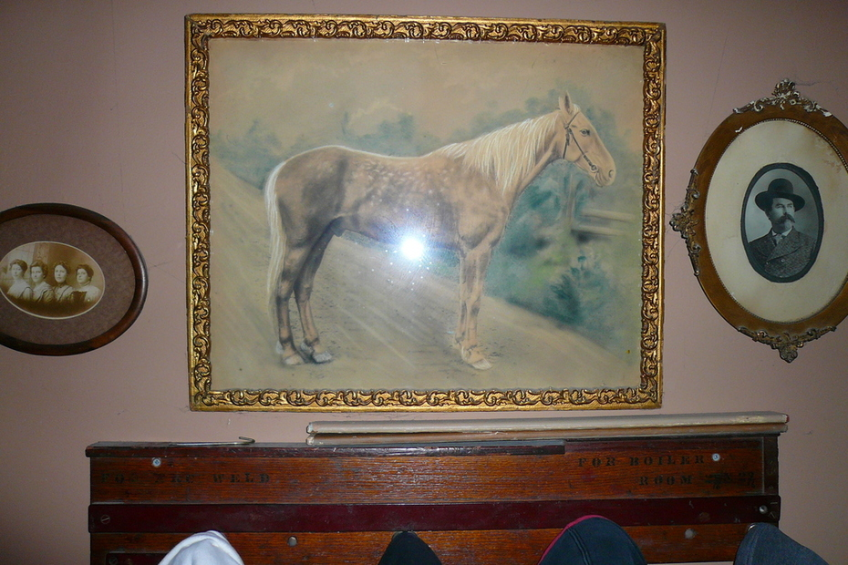 antique charcoal horse drawing