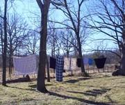 laundrysheets