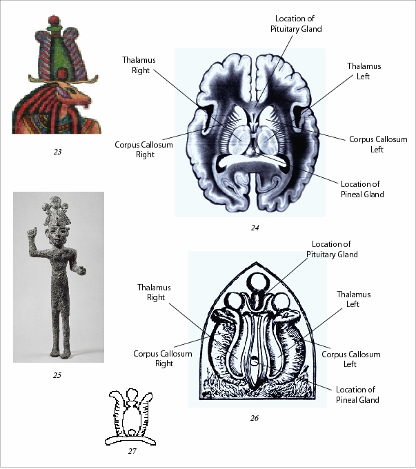The Occult Brain - Esoteric Online