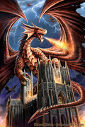 Dragons%20Fury%20by%20Anne%20Stokes