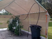 GHouse Just steel frame and shade 8/9