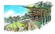 Hilltop Bamboo Terrace