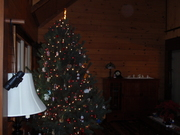 our frist christmas tree, not sure if this was the first or second time we decorated it, stupid crooked tree