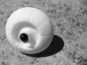 shell?_3D nylon based print