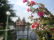 Istog Eden Garden