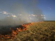 El fuego avanza por las pampas