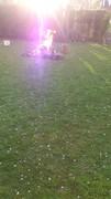 Violet Fire 3