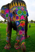 decorated Elephant...Art from Mysore ...South India...