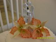 Sugarcraft Orchid