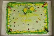 Syrina's birthday cake 2012