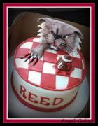 Wildcat Birthday Cake