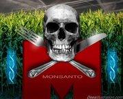 monsanto skull_