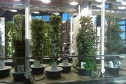Tower Gardens in Chicago's Ohara Airport