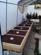 New Grow Beds