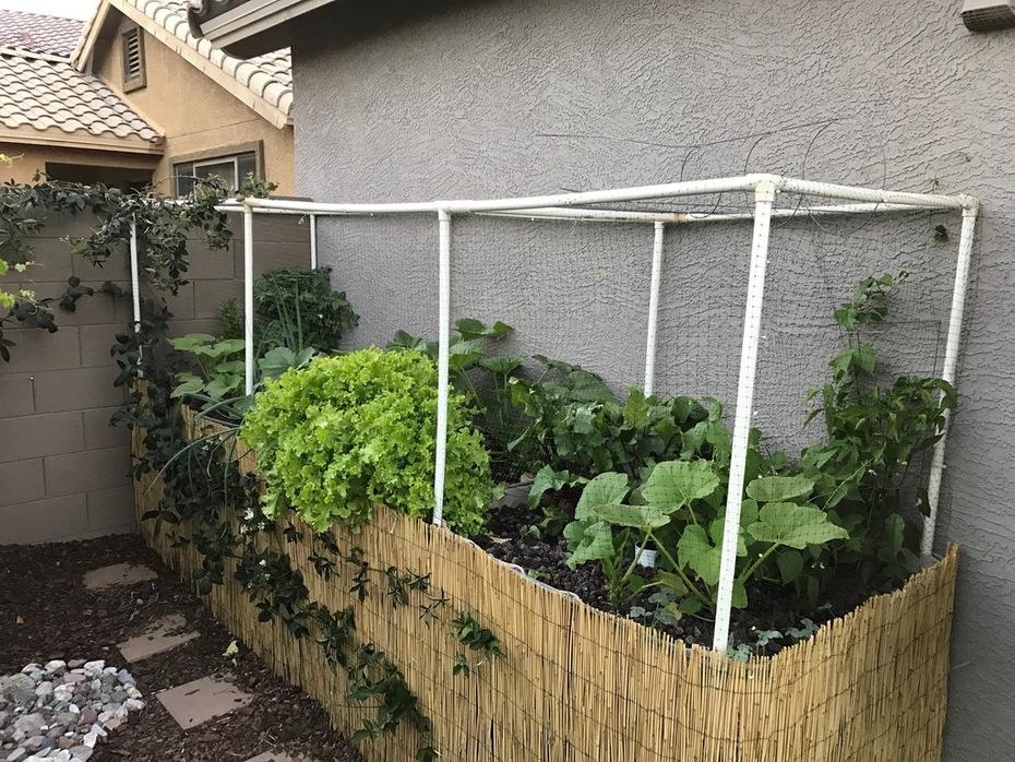 Update - Grow Beds