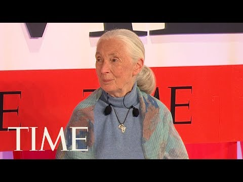 Jane Goodall Calls For Billions Of People To 'Make Ethical Choices' To Save The Planet