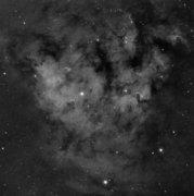 NGC 7822 Ha
