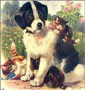 Vintage Dog Collectibles