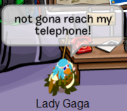 club penguin and lady gaga lovers