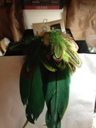 green feather set