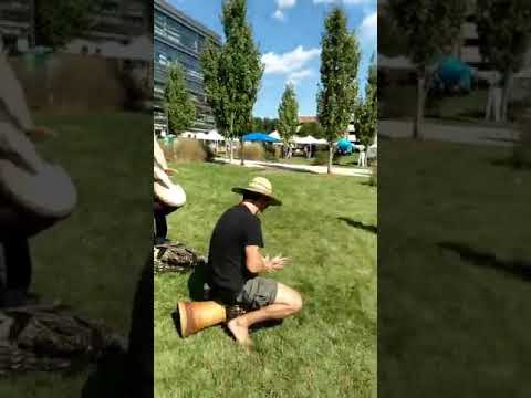 Northern Virginia Pagan Pride Day 2018