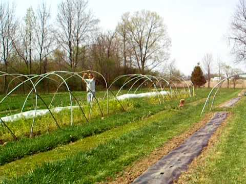 Boulder Belt Eco-Farm: How to Lay Drip Tape and Plastic Mulch by Hand, Pt 5