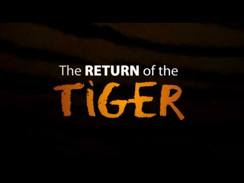 THE RETURN OF THE TIGER - John Abraham appeal