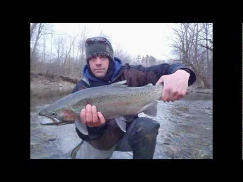 steelhead 2012 ohio lake erie tribs fly fishing abel orvis