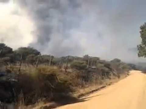 Audio / Bomberos casi mueren al quedar atrapados en medio incendio forestal en el sur de Chile / Video Destacado de La Hermandad de Bomberos