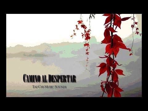 ...♪♫ Tai Chi Music Sounds ~ Oliver Shanti ♫♪..