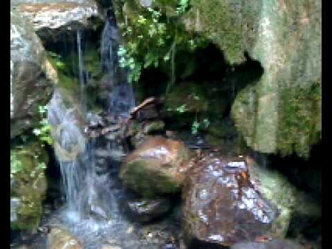 Mother Earth Reiki ~ giving & receiving  ~ channeled by HeavenlyButterfly