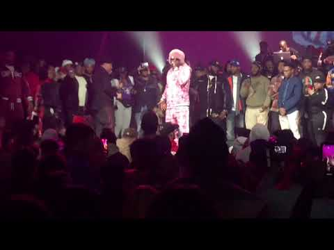 The Diplomats (Dipset) live at The Apollo