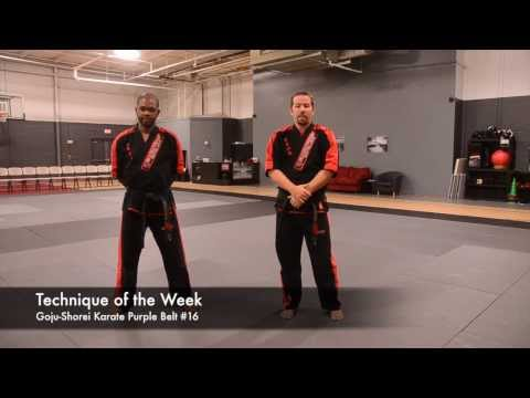Technique of the Week Goju-Shorei Karate Purple #16