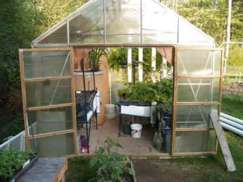 Aquaponics Greenhouse Tour