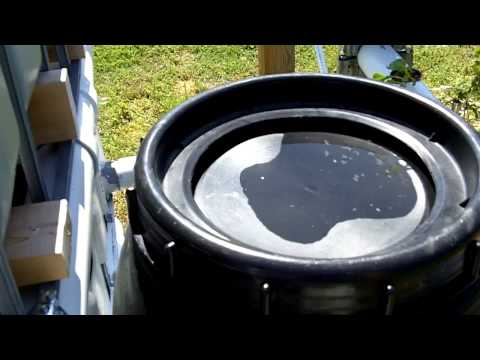 Aquaponics Update- System Cycling 5/5/2011
