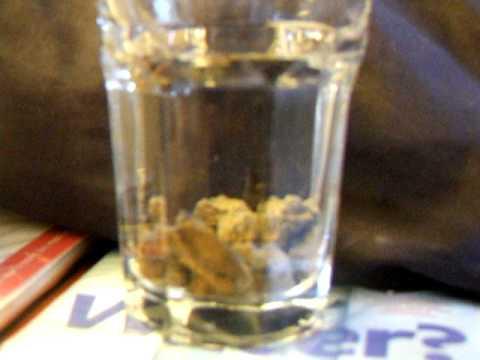 Aquaponics Media Fizz Test using vinegar
