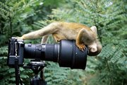 pamoja na kukajuu ya camera ila imempata