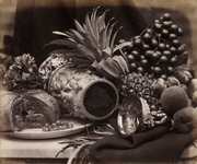 Art of Arrangement: Photography and the Still Life Tradition