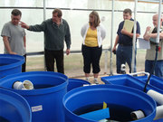 Aquaponics and Controlled Environment Agriculture