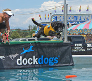 ROCKY MOUNTAIN DOCKDOGS ARE ROCKIN' THE DOCK AT PUEBLO CONVENTION CENTER'S INAGURAL PET EXPO
