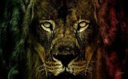 CONQUERING LION OF THE TRIBE OF JUDAH