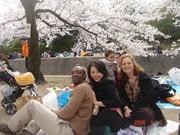 beautiful life in japan