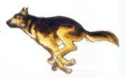 Hund4