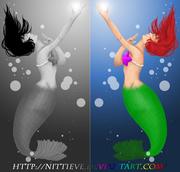 Ariel VS. Svart
