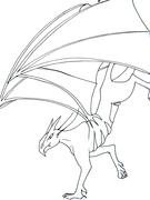 Un drake