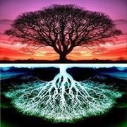 kabbalah-two-trees