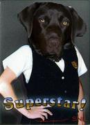 stella_superstar